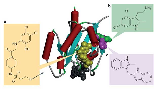 Figure 1. Fragment-based Drug Design.(From Nature Reviews | Drug Discovery)
