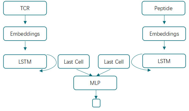 Figure2 LSTM based model architecture