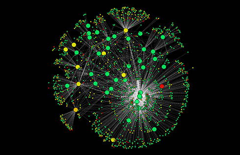 Complex Network Analysis Service
