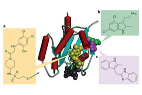 Fragment-Based Drug Design